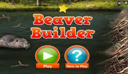 Andy's Wild Adventures: Beaver Builder
