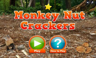 Andy's Wild Adventures: Monkey Nut Crackers